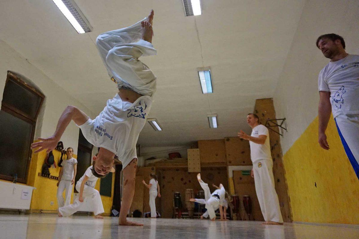 Capoeira Akademie Berlin: Balance auf einer Hand